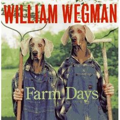 William Wegman and his Weim pictures