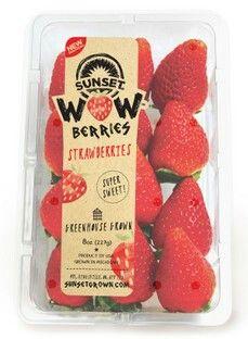 Sunset wow berries