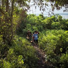 Munduruku men carry home the days hunt in the village of  Sawre Muybu. The Munduruku are a tribe of around 12,000 people who have lived along the Tapajos River since before colonization, Dec. 2014.