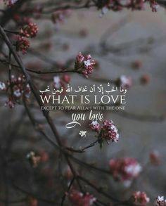 💞💖suad💖💞  ..#islam #Muslim #Allah #quran #Ramdan #hadith #Prophet #Makkah #Hijjab #islamic #namaz #Fasting #nikah #jannat #Ramzan #shaadi #couple #iftaar #jummah #alhamdulillah #Bismillah #Allahuakbar #Subhanallah #Ameen .#surah #dua #love .