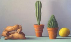 1stdibs | Amy Weiskopf - Still Life with Sweet Potatoes and Cacti