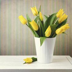 15 Best Watercolor Flowers Images Watercolor Art Watercolor