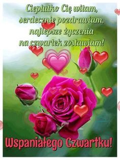 Beautiful Roses, Good Morning, Happy, Pictures, Humor, Happiness, Funny, Blog, Photos