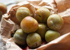 Raine Claude Verte/ Greenage plum jam in the style of Christine Ferber