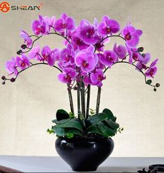 Phalaenopsis Orchid Plant Butterfly Orchid Potted Seeds Phalaenopsis Orchid Indoor Flowers Bonsai Potted Home Garden Plant Orchid Flower Arrangements, Orchid Centerpieces, Orchid Pot, Orchid Plants, Artificial Orchids, Indoor Flowers, Home Garden Plants, Phalaenopsis Orchid, Table Flowers
