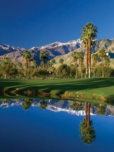 This is a picture of Mission Hills golf course in Palm Springs.  I chose this picture because golf is an important asset in my life.  Are used golf as an outlet for my emotions.  This connects to who I am because golf is life.