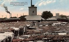 Austin Texas cotton compress, cotton bales  on platform