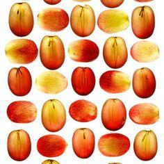 Red Grapes - Fitnessmagazine.com