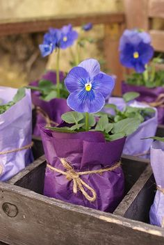 How about pots of purple pansies wrapped in colored paper and tied with twine for your reception tables or garden party? Make enough to take home as favors. Pot Plante, Deco Floral, Vintage Roses, Baby Shower Favors, Shower Prizes, Shower Gifts, Bridal Shower, Pansies, Lilacs