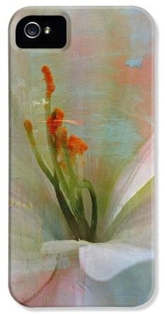 Soft Painted Lily