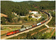 https://flic.kr/p/bkARqT | Mealhada 28-01-12 | Locomotiva Diesel nº6001, Comboio de mercadorias nº48810 , Fuentes D`Onõro > Entroncamento