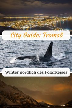 Tromso, Lofoten, Reisen In Europa, Countries Of The World, Norway, Canada, Good Things, Vacation, City