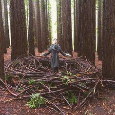 East Warburton redwood forest, Yarra ranges, Melbourne VIC