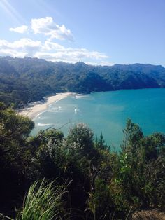 Waihi, New Zealand. Kiwi, New Zealand, Beautiful Places, Sweet Home, River, Outdoor, Outdoors, House Beautiful, Outdoor Games