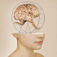 Walk of Brain. Brain Art, Psy Art, Hamster, Inspirational Artwork, Surreal Art, Photo Manipulation, Collage Art, Collages, Photo Art