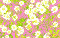 Lilly Pulitzer Backgrounds | Lilly Pulitzer Stationery Sale Wallpaper