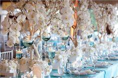oscar by oscar | tiffany-blue-manzanita-phalaenopsis-coronet-hotel ...