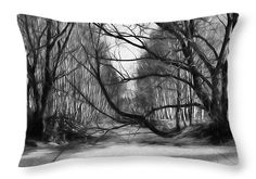 throw pillow http://fineartamerica.com/products/9-lack-and-white-artistic-painterly-icy-entrance-blocked-by-braches-leif-sohlman-throw-pillow-20-14.html