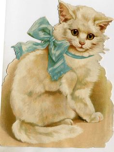Adorable white cat with large blue bow. Helena Maguire