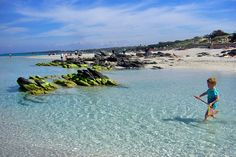 The shallow beach at La Pelosa is ideal for kids   Sardinia's best beaches, from sandy to pebbly to pink   Weather2Travel.com #italy #beach #travel