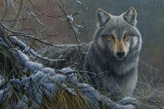 Jeremy Paul Wildlife Artist