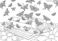Die 22 Besten Bilder Von Ausmalbilder Schmetterlinge Papillons