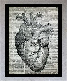 Anatomical Heart Illustration - Old book page, Vintage Medical Drawing Art Print, Print on vintage dictionary book page paper