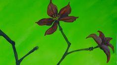 flower (10.24.2012)