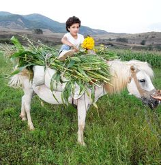 field workers, albania, 9-10