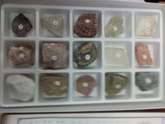 rocks and minerals - http://collectibles.goshoppins.com/rocks-fossils-minerals/rocks-and-minerals/