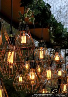 Our fabulous stand alone lighting feature - ideal for over a top table at a barn wedding. Bare edison bulbs, optional cages and silk ivy for a stunning display of wedding lighting