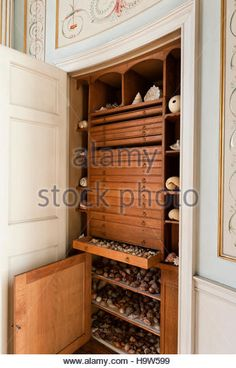 Shelves and drawers in a cupboard in The Boudoir containing a shell collection at Attingham Park, Shropshire. - Stock Image