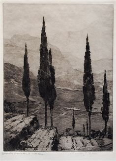 'The Cypresses', by Chauncey F. Ryder