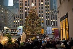 Tourists in New York Living In New York, New York City, Street View, Holiday Decor, News, Modern, Trendy Tree, New York, Nyc