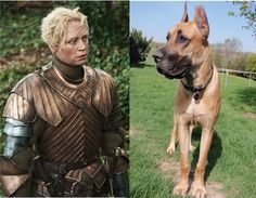 """Brienne of Tarth 
