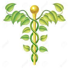 Risultati immagini per medicina naturale