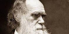 Afbeeldingsresultaat voor darwin