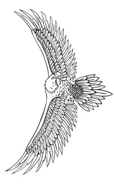 Discover recipes, home ideas, style inspiration and other ideas to try. Tattoo Sketches, Tattoo Drawings, Body Art Tattoos, Tattoos Skull, Eagle Wing Tattoos, Tattoo Eagle, Tattoo Lower Back, Rabe Tattoo, Tattoo Bauch