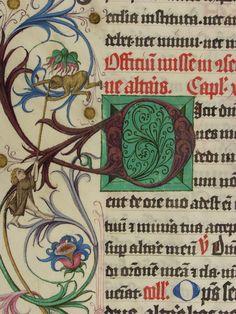 Pontifikale Adolfs II. Erzbischof von Mainz, vor 1474 Meister der Gauklerszene im Hausbuch Blatt107v