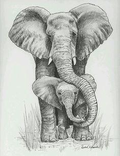Elefante bebe y mama (grafito)