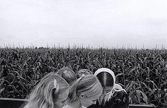 Larry Towell: Mennonite children in a cornfield, 1994