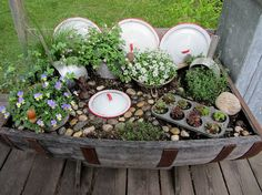 Everything but the kitchen sink in this unique mini garden ... repurposed lids, muffin tin and pots all in a half wine barrel. | The Micro Gardener