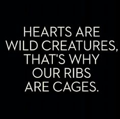 Well said. I suppose hearts can be caged, but never tamed ♥