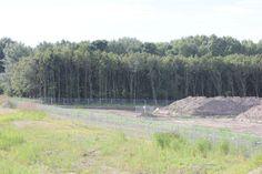 DUIN augustus 2012: nog nauwelijks voor te stellen dat hier straks echte duinen zijn...