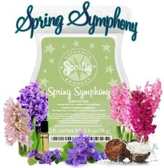 SPRING SYMPHONY SCENTSY BAR As fresh as a spring garden — sweet hyacinth sings with a fragrant medley of coconut water, violet leaf and soft musk.   https://heyitsjess.scentsy.us/Buy/ProductDetails/32049