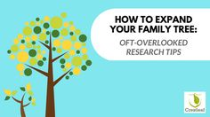 Is your family tree looking sparse? Expand your family tree with these oft-overlooked tactics for discovering new information and long-lost ancestors.