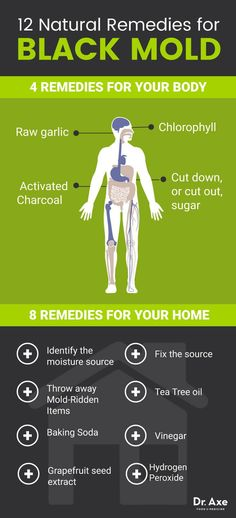 Natural treatments for black mold - Dr. Axe
