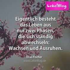Wisse, wer du bist, welche Kraft in dir steckt und lege los! Deine Selbstverwirklichung: http://www.lebeblog.de/vds #wachstum