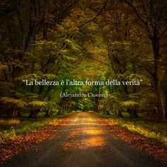 V Quote, Words Quotes, Me And Bobby Mcgee, Narrative Story, Most Beautiful Words, Learning Italian, Country Roads, Wisdom, History