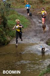 Palmer and I are in training  CaniX UK: official website of Canicross UK, CaniX Team UK, European Cani-Cross and Bikejor Championship Cirencester
